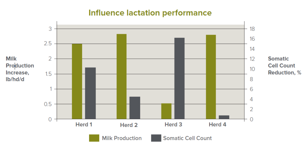 Influence of lactation performance
