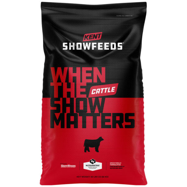 Show Cattle Red Line