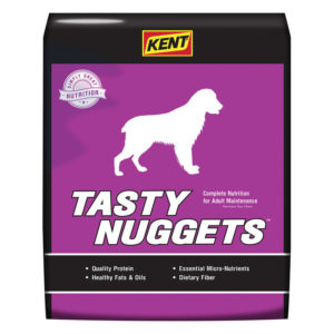Tasty Nuggets